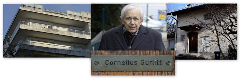 Whois Gurlitt.info?