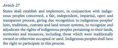 Article 27, United Nations Declaration on the Rights of Indigenous People (2007)